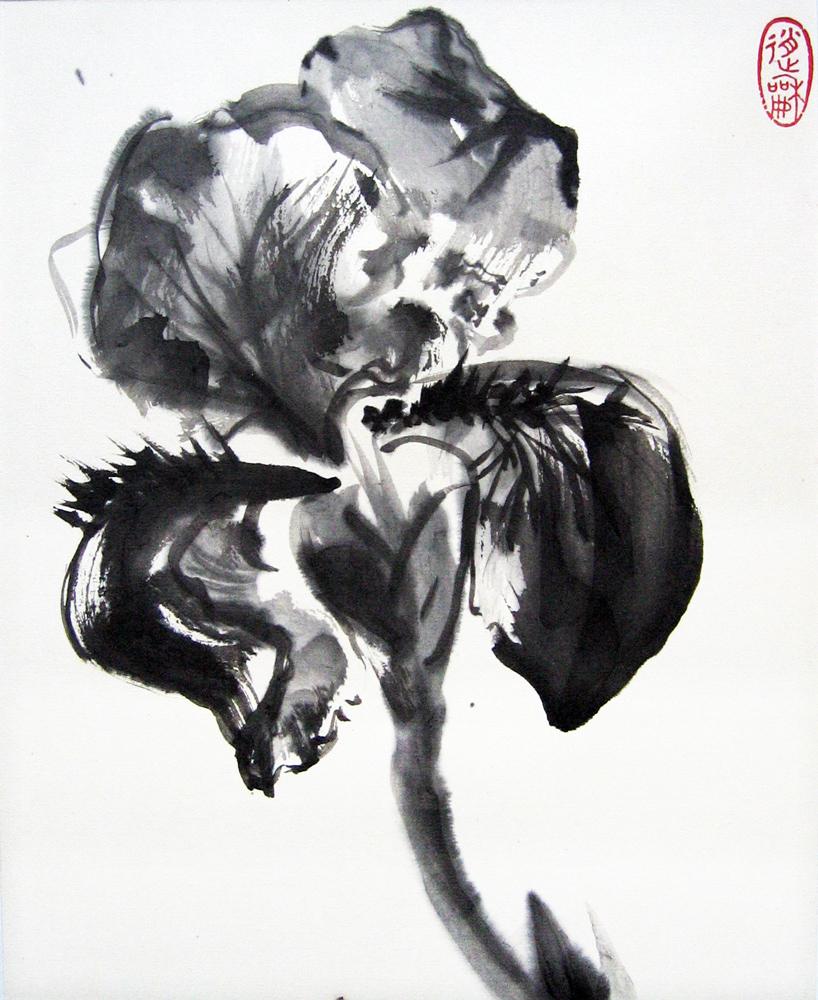 Iris, 2010 | Encre sur papier