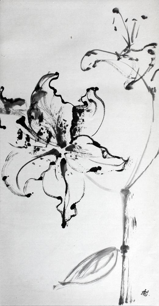 Lys blanc, 2008 | Encre sur papier