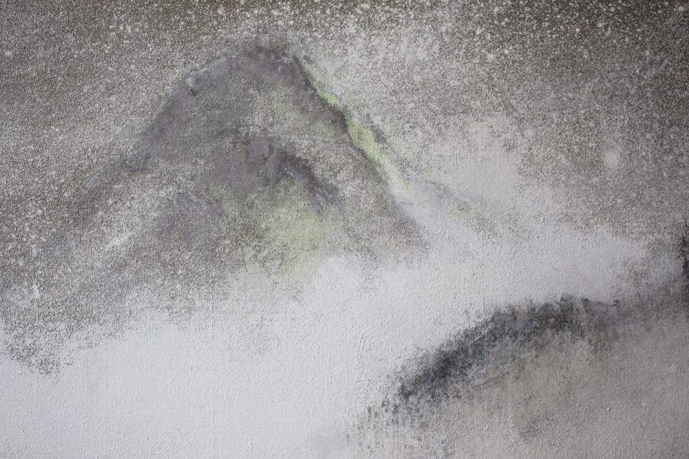 Kham, visite au lama (détail), 2008 | Pigments sur toile | 65 x 150 cm