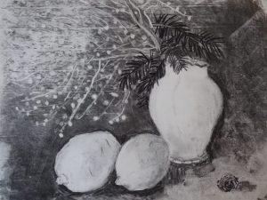 Mimosas au fusain